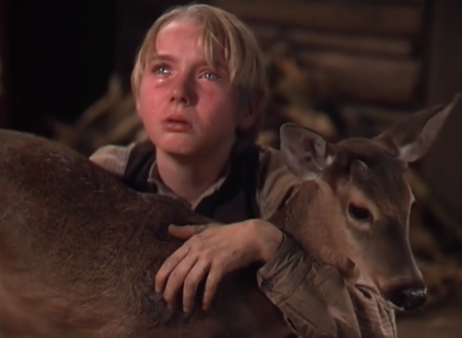 the yearling 2